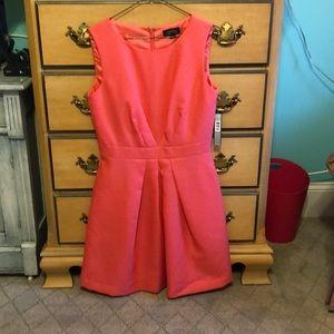 Tahari dress size 4 brand new